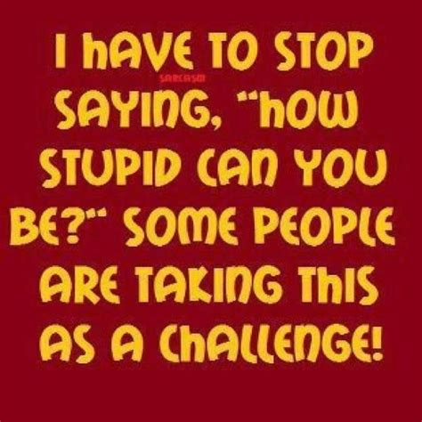 People's opinions and lives are very important to me. stupid. | life, quotes & thoughts. | Stupid people quotes, Funny quotes, Stupid people