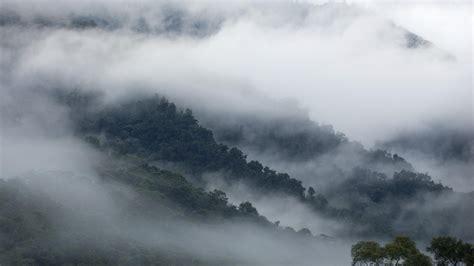 fog hd wallpaper background image  id