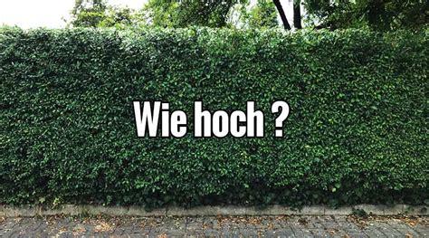 erlaubte zaunhöhe nrw wie hoch darf der zaun zum nachbarn sein wie hoch darf sichtschutzzaun sein zaunteam der zaun