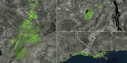 Ecosystems Similar Mapping Terrestrial Areas Everglades Living
