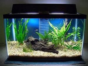 Fish Tank Decoration Ideas Home Decor and Interior Design