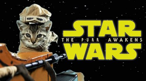 Star Wars: The Purr Awakens - YouTube