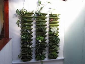 Plantes Grimpantes Mur : le jardin de sophie plantes grimpantes ~ Melissatoandfro.com Idées de Décoration