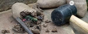 How to Make Dinosaur Fossil Rocks passport to