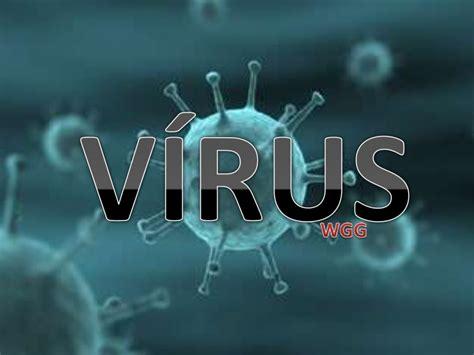 biologia virus