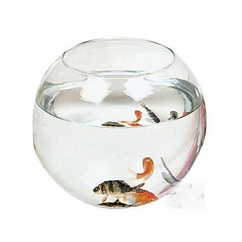 aquarium rond boule verre 20x16cm poissons achat et vente