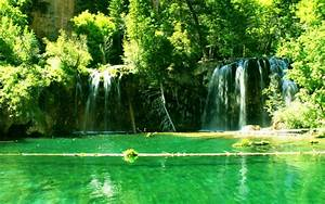 Green, Water, Landscapes, Nature, Trees, Forest, Lakes