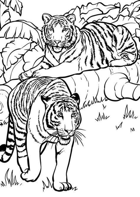 easy  print tiger coloring pages tulamama