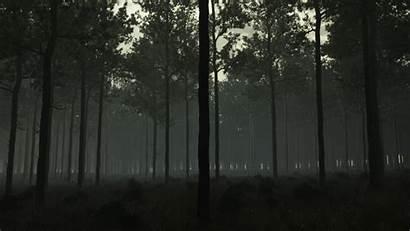 Eerie Forest Deviantart Trees Tone