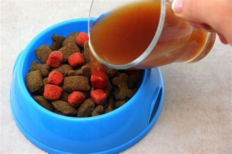 dog gravy  dog food  dogs