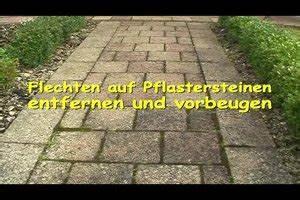 Flechten Entfernen Hausmittel : video flechten auf pflastersteinen tipps f r entfernung ~ Lizthompson.info Haus und Dekorationen