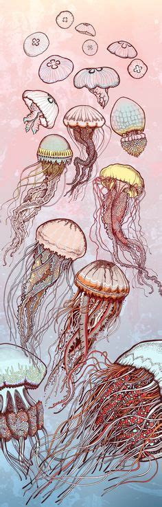 Best Illustration Sea Creatures Images Draw