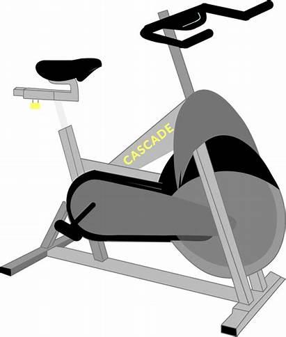 Cartoon Gym Equipment Transparent Clipart Jing Fm