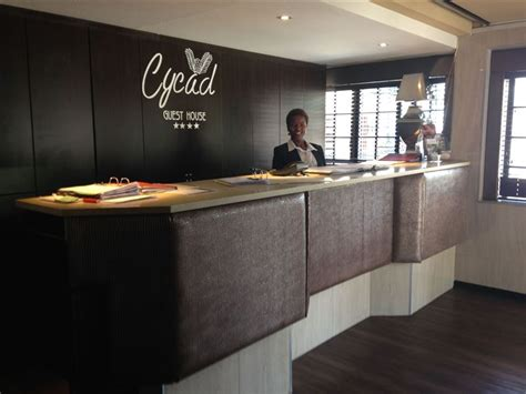 cycad guest house  polokwane pietersburg airportstay