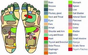 Printable Reflexology Foot Chart Showing Pressure Points