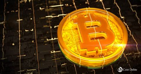 Bitcoin price started a fresh increase from the $55,000 support zone against the us dollar. As Bitcoin Price increase, The Bulls Follows the Market | Coindelite News