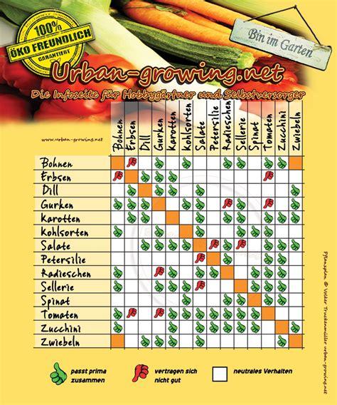 pflanzplan welche gemuesesorten vertragen sich