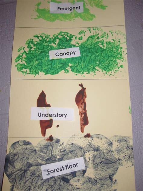 preschool rainforest lesson plans best 25 rainforest preschool ideas on 195
