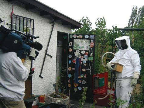 fressen marder wespennester wespennest entfernen lassen mieter kann wespennest