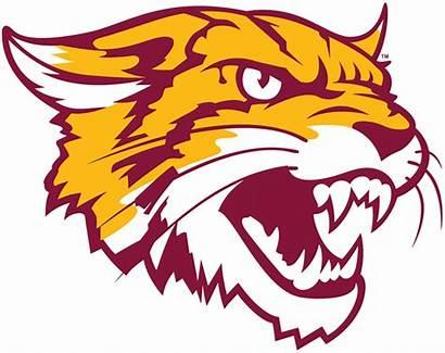 Bethune Cookman Wildcats Logos Alternate Sports Sportslogos