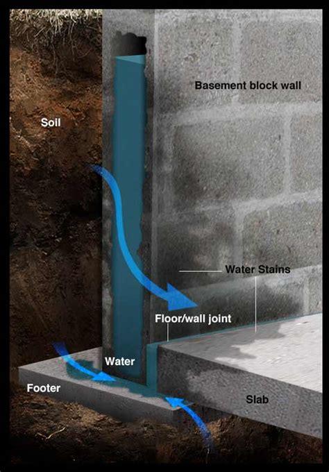 make your basement diy repair guide radonseal