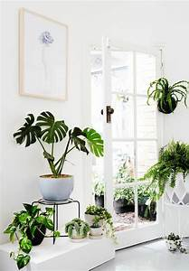 porte plante interieur formidable support plante With meuble plantes d interieur 6 porte plante et support pot de fleur interieur de style