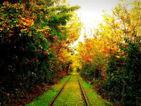 Stampe artistiche quadri e poster con atmosfera autunno