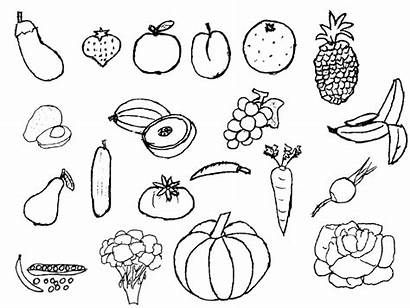Vegetables Fruits Zone Drawing Fruit Clil Teachers