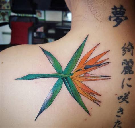 pop fan tattoos    level sbs popasia