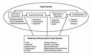 An Episodic Model Of Anger In Organizations