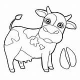 Cow Coloring Head Printable Pages Getcolorings Cattle sketch template