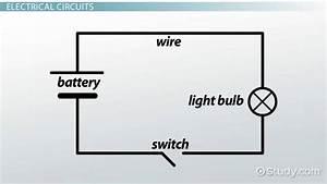 Wiring Diagram Definition Biology