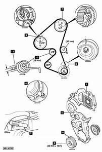 Citroen Timing Belt