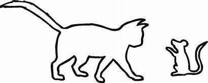 Outline Cat Drawing Coloring Mouse Clipart Basic