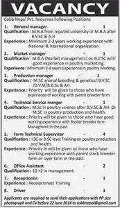 Vacancy Job Announcement Email Sample