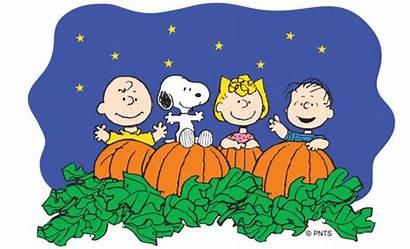 Pumpkin Charlie Brown Clipart Peanuts Characters Halloween