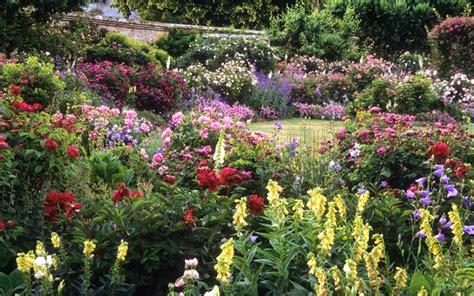 cuisine hardy générosité des floraisons dans un jardin anglais jardins anglais