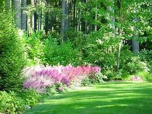 Gazon Pour L Ombre : quelles esp ces de plantes d 39 ombre cultiver dans nos jardins ~ Premium-room.com Idées de Décoration