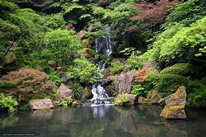 Download wallpaper Japanese Garden, Washington Park ...