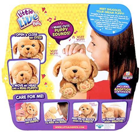 pets snuggles  dream puppy buy