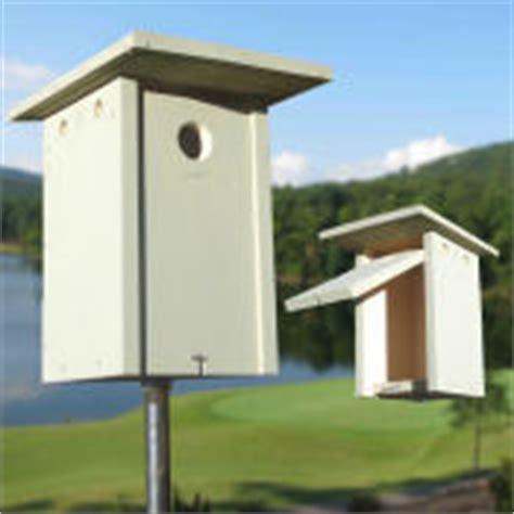 bluebird nestbox plans