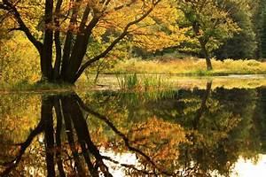 Bilder Herbst Kostenlos : herbst am see bilddatenbank bilder kostenlos und lizenzfreie fotos slideshow und ~ Somuchworld.com Haus und Dekorationen