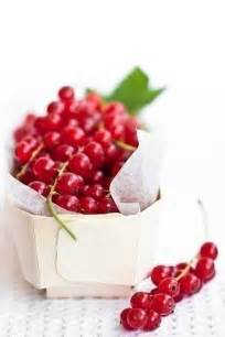 Like Red Currant Berries