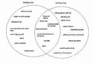 Using A Venn Diagram For A Compare And Contrast Essay