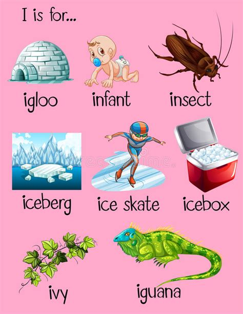words that begin with the letter i many words begin with letter i stock vector illustration 855   many words begin letter i illustration 72047901
