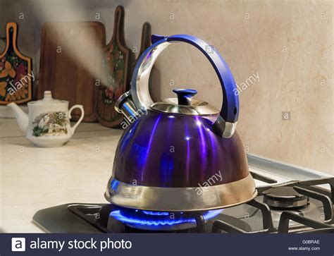 kettle stove water gas tea boiling boil steam whistle kettles st flame drinking whistling autumn before berries still cooking bacteria