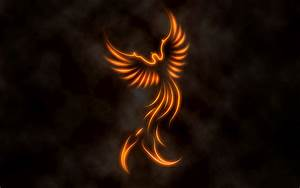 fire phoenix Wallpaper and Background | 1680x1050 | ID:165420