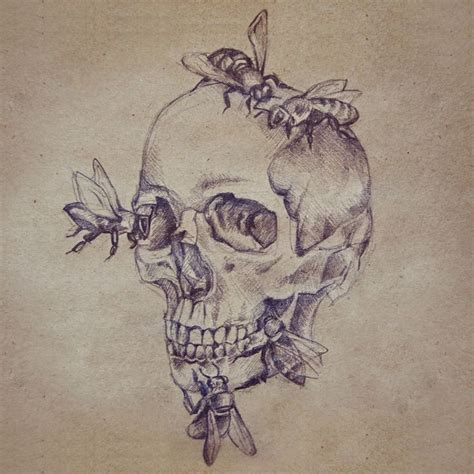 Skull Bees Astrid Babayan Sketchbook Tumblr