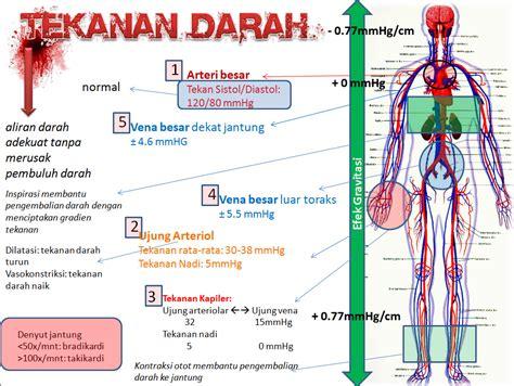 penatalaksanaan farmakologis  penderita hipertensi