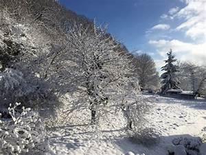 Im Winter Richtig Lüften : richtig l ften im winter energie fachberater ~ Bigdaddyawards.com Haus und Dekorationen